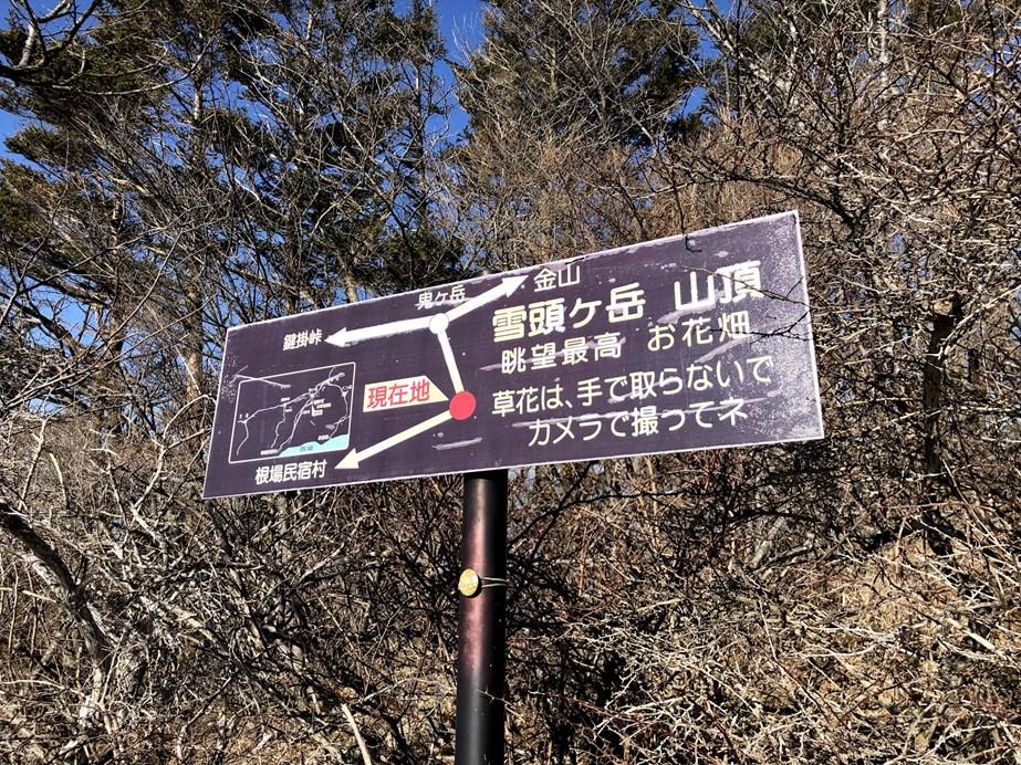 f:id:Kyo_Ichikawa:20190218194434j:plain