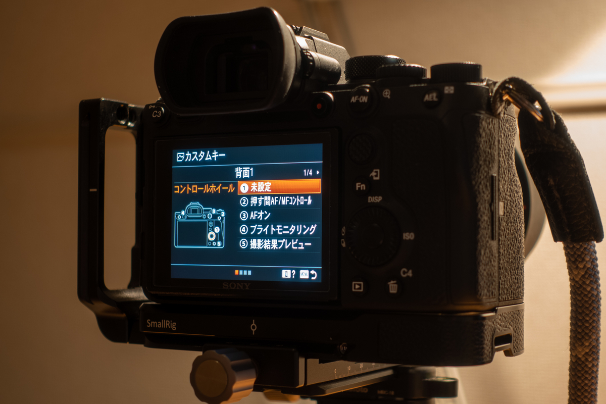 f:id:Kyo_Ichikawa:20200421215605j:plain