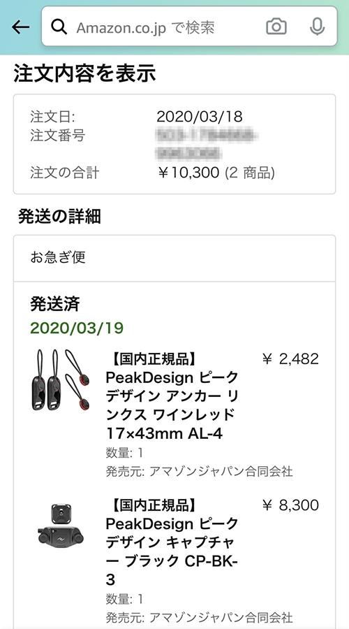 f:id:Kyo_Ichikawa:20210110102510j:plain