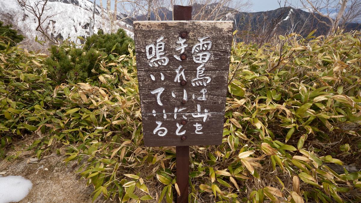 f:id:Kyo_Ichikawa:20210523081622j:plain