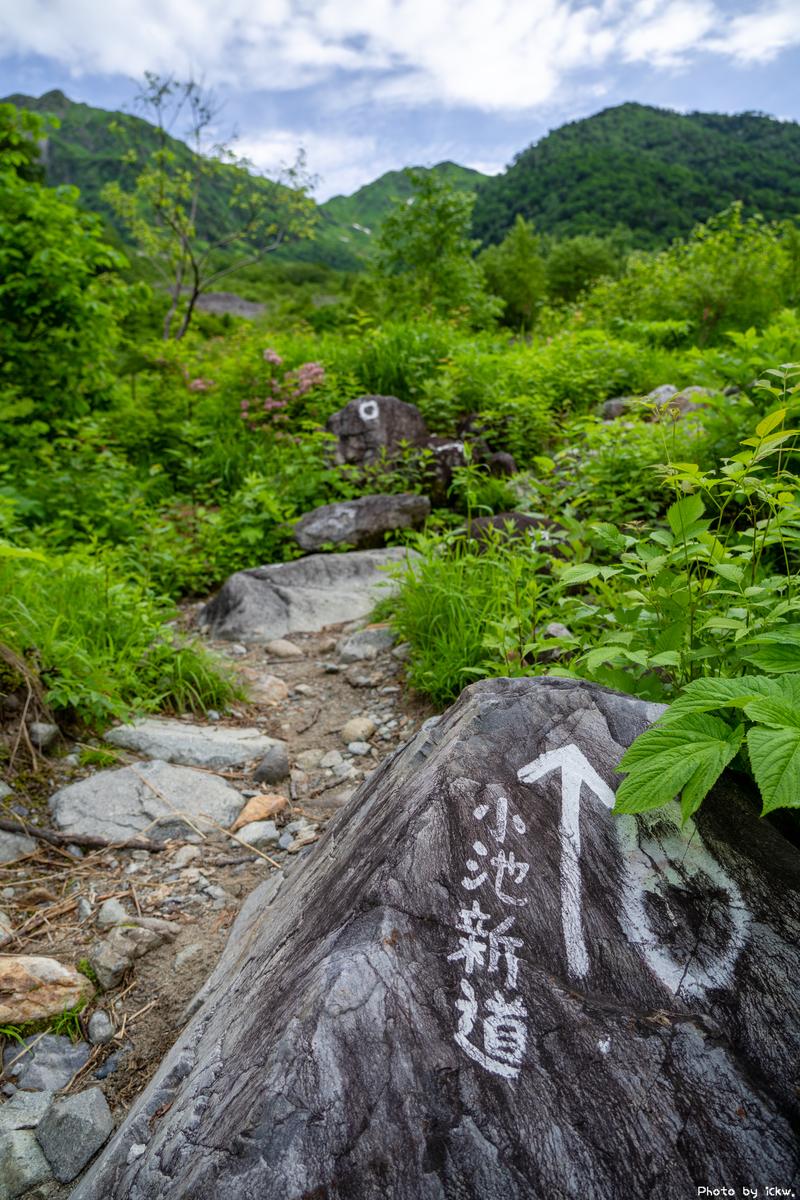 f:id:Kyo_Ichikawa:20210815134550j:plain