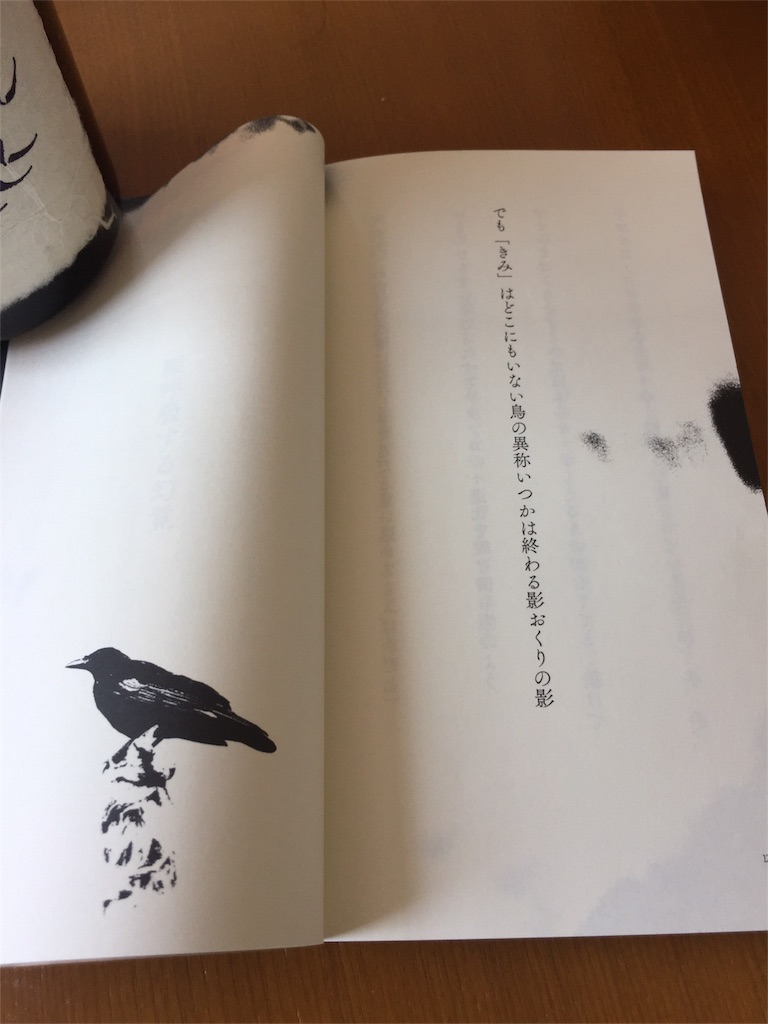 f:id:Kyogoku_Korin:20180625130053j:image