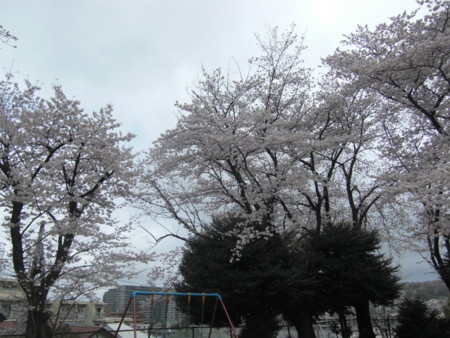 f:id:KyojiOhno:20110409131238j:image