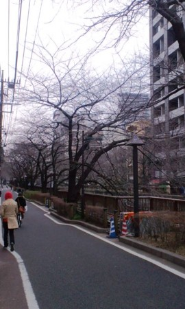 f:id:KyojiOhno:20120222143633j:image