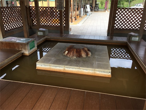 f:id:Kyushu-Tetsutabi:20180823140345j:image