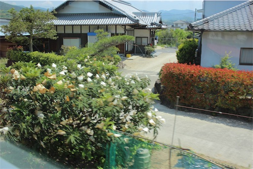 f:id:Kyushu-Tetsutabi:20190531224239j:image