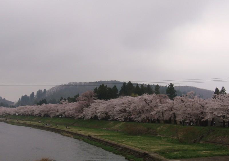 f:id:L-Komachi:20100504135643j:image:w300
