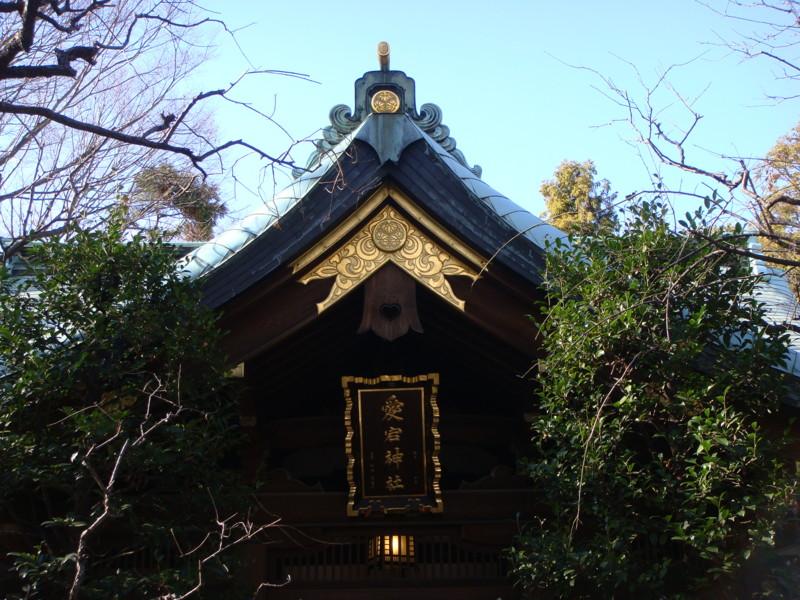 f:id:L-Komachi:20110102125354j:image:w250