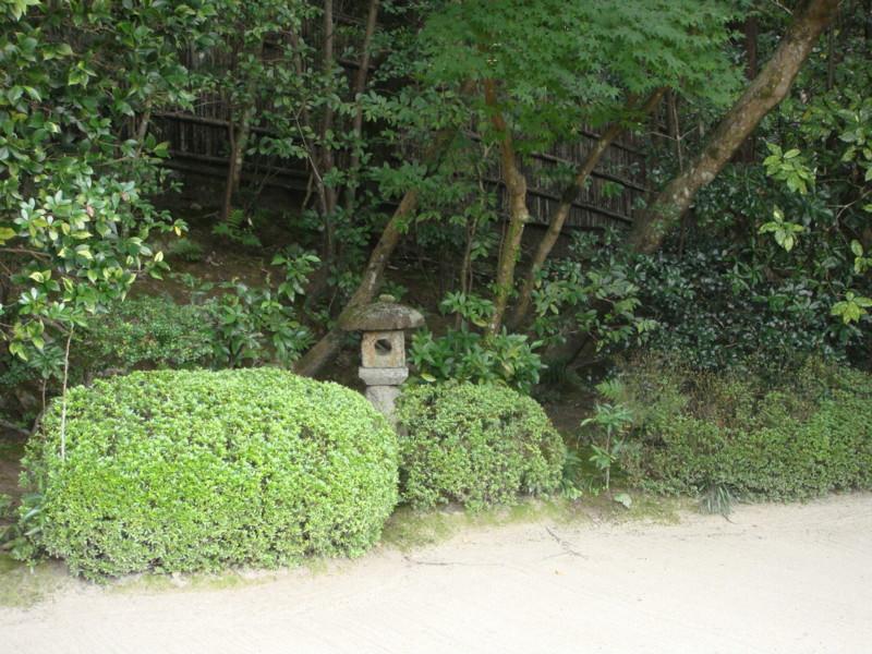 f:id:L-Komachi:20110925121433j:image:w250
