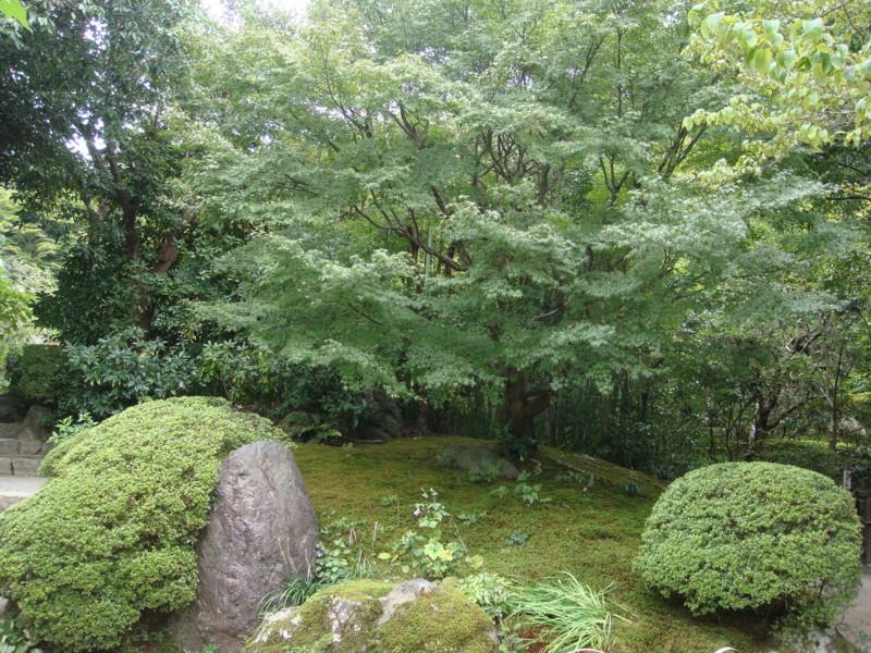f:id:L-Komachi:20110925122201j:image:w250