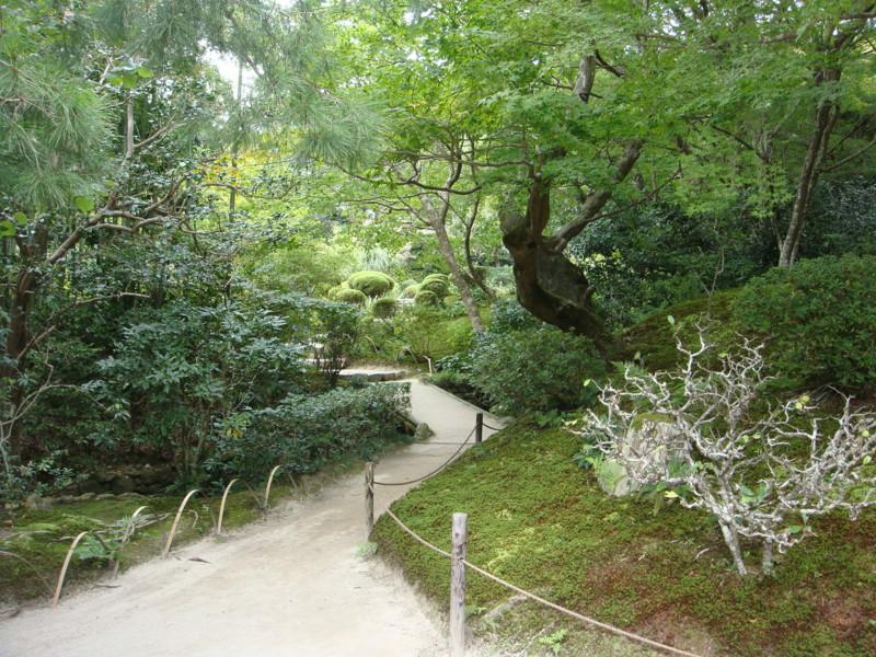 f:id:L-Komachi:20110925122344j:image:w250