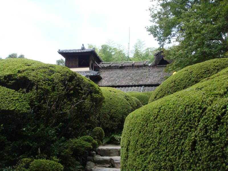 f:id:L-Komachi:20110925123032j:image:w250