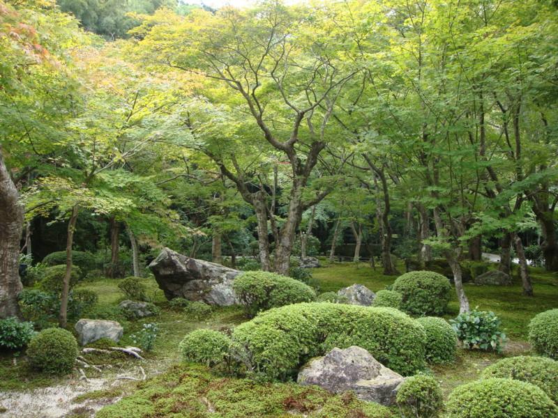 f:id:L-Komachi:20110925125238j:image:w250