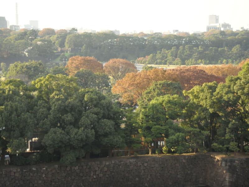 f:id:L-Komachi:20111126151621j:image:w250