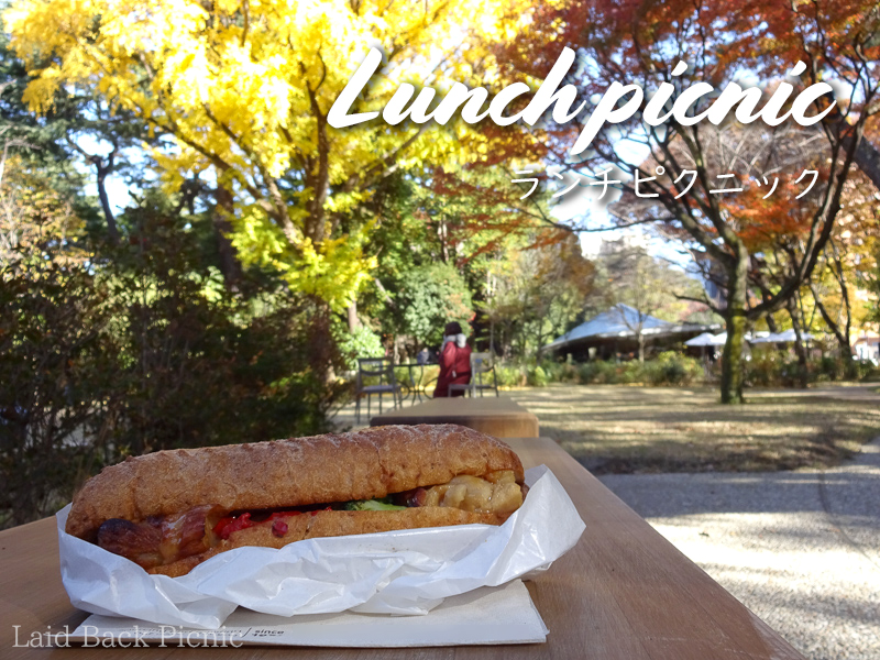 Sandwich and autumn leaves
