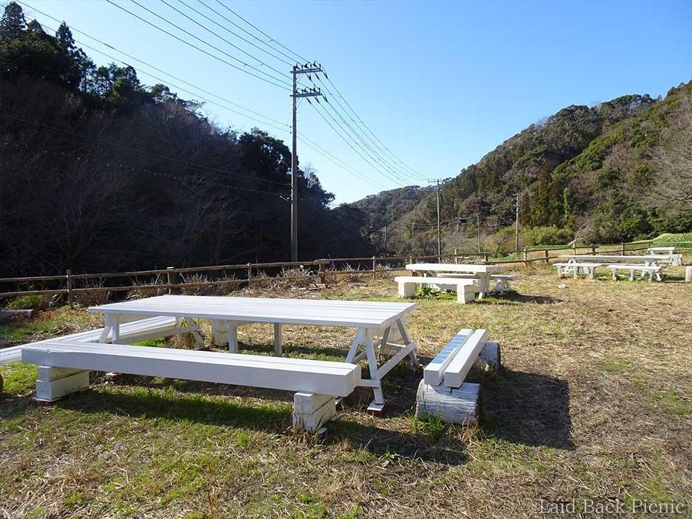 少し高い場所にベンチがある
