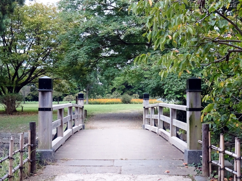 橋の奥には花畑