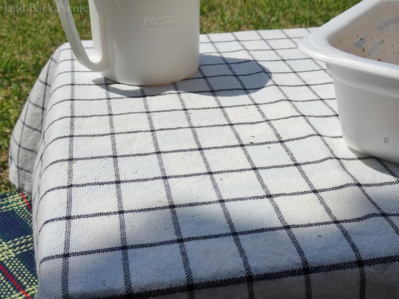 テーブルの上に着地した青のり