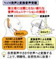 無音声電話(奈良先端大)