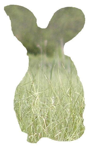 f:id:LM-7:20100322184406j:image:w150