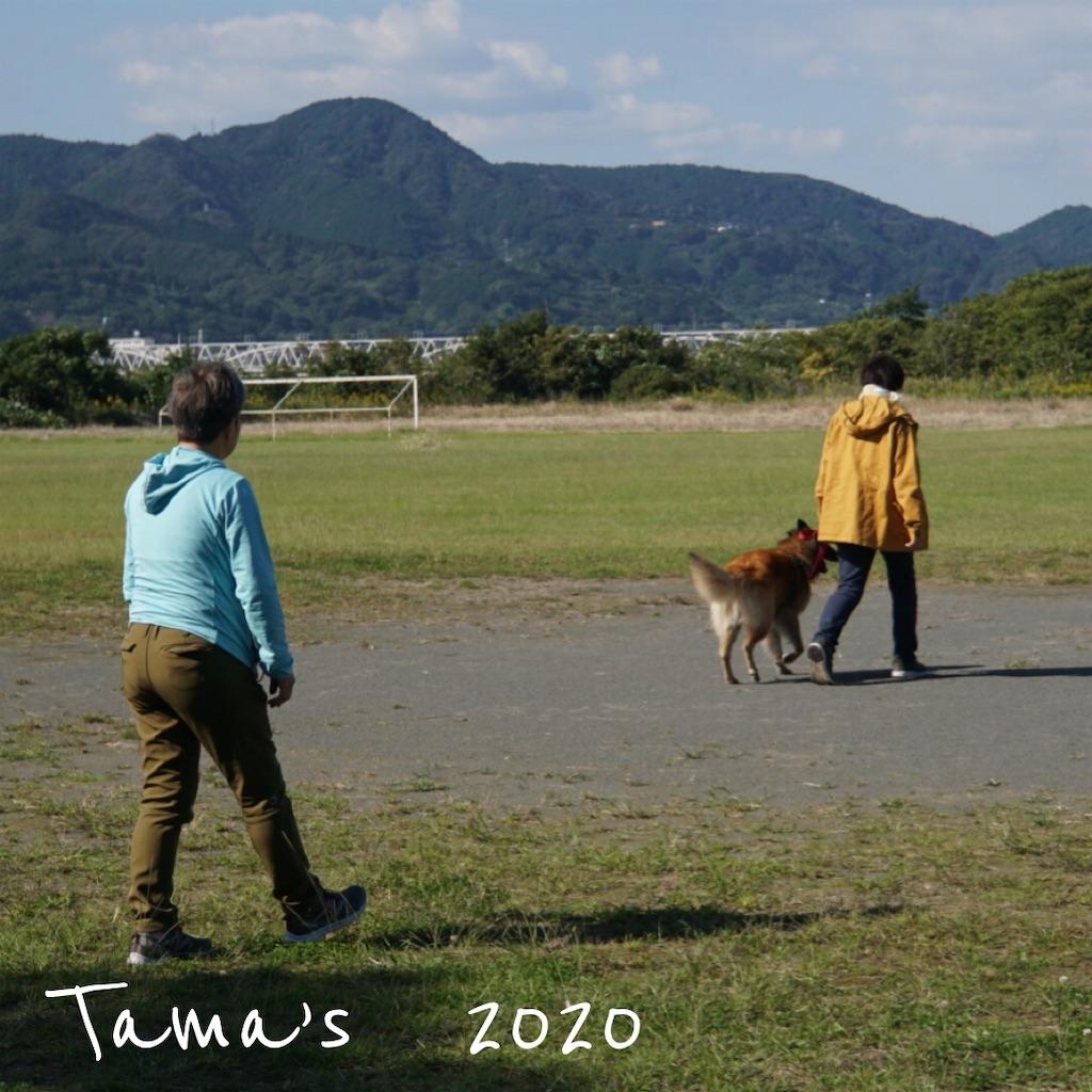 f:id:La-Plume-Douce:20201024164326j:image