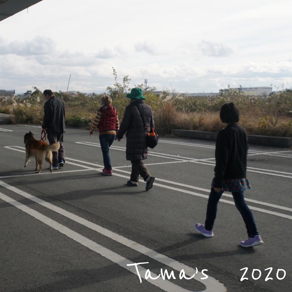 f:id:La-Plume-Douce:20201220165543j:image