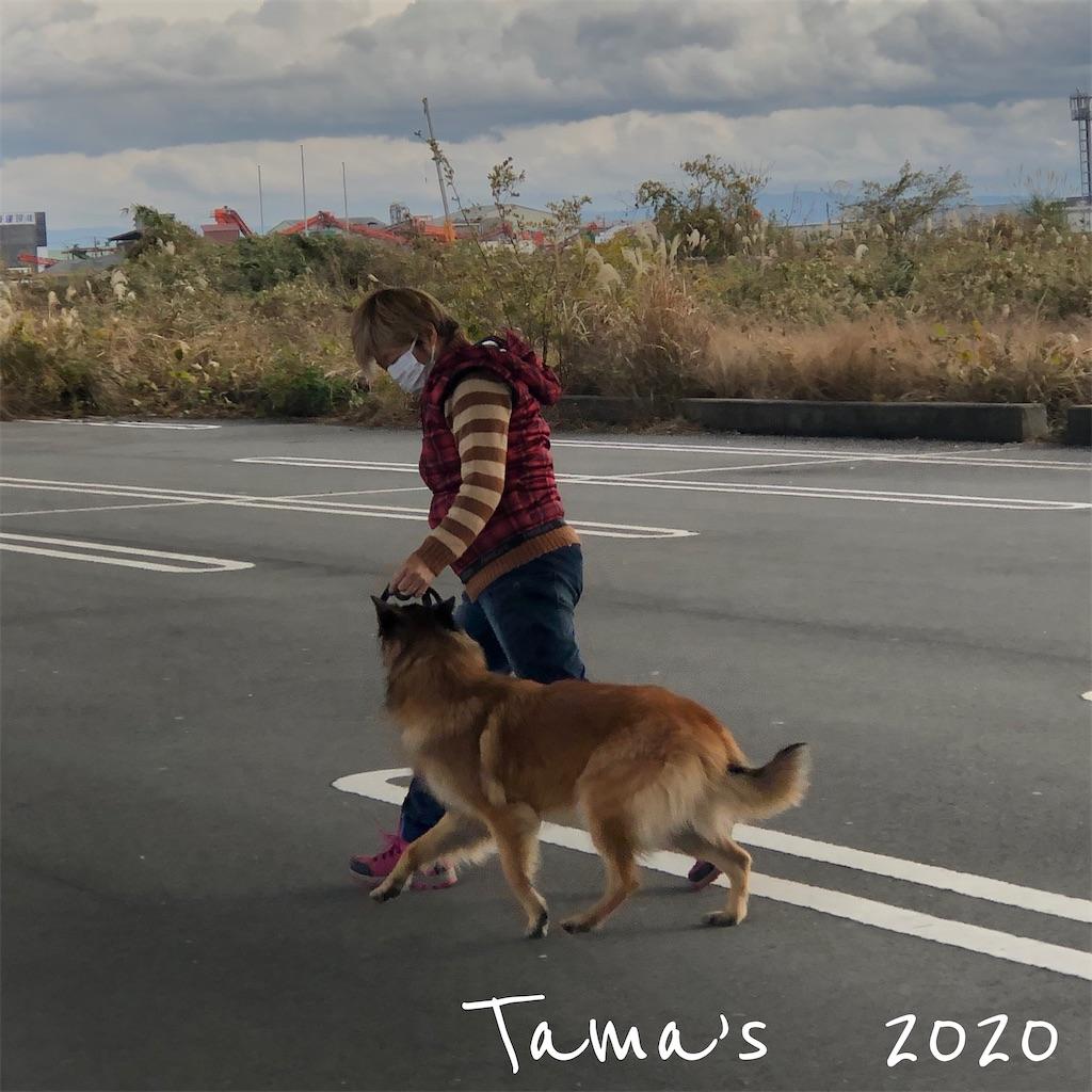 f:id:La-Plume-Douce:20201220165557j:image