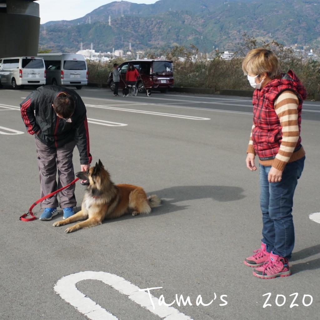f:id:La-Plume-Douce:20201220165603j:image