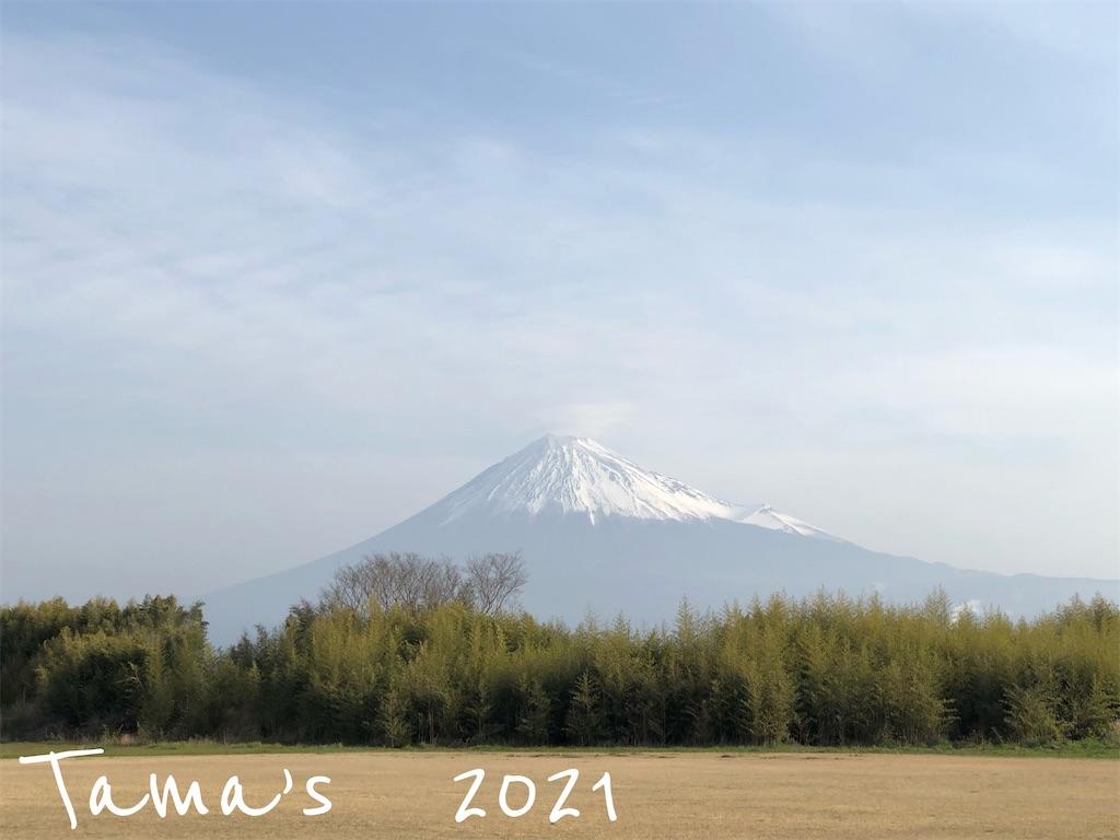 f:id:La-Plume-Douce:20210324125532j:image