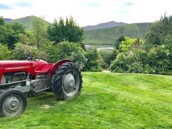 ブドウ畑のトラクターとヘイズ湖