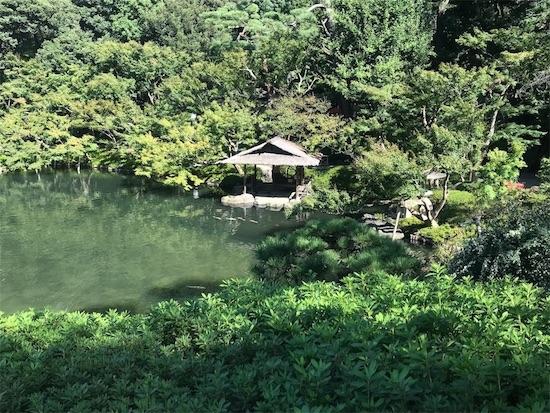 八芳園の庭園(池)