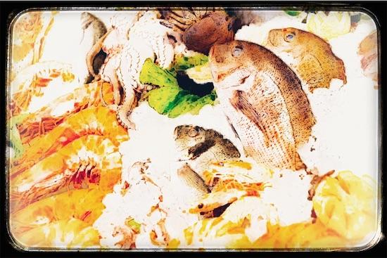 並べられた魚介類の絵
