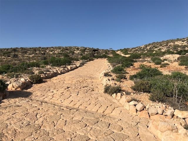 ランペドゥーザの荒野