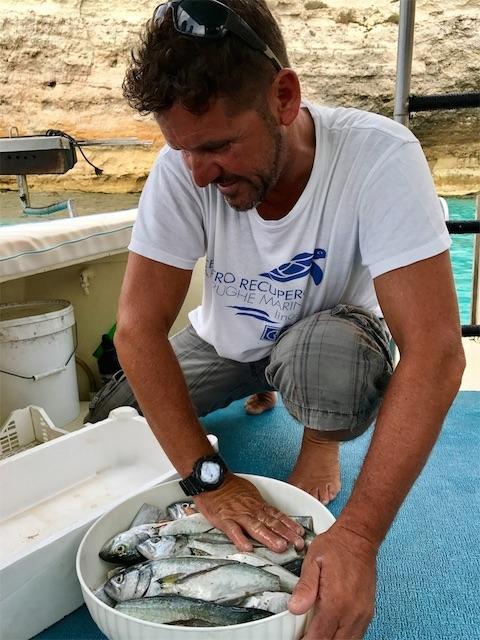 朝穫れの魚をマリネにする船長