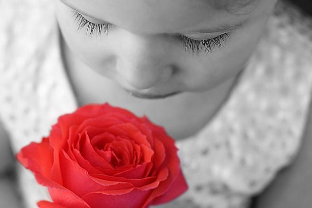 まつげの長い少女と赤いバラ