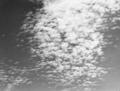 『麦秋』の空