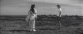 今日の映画「秋立ちぬ」(1960)