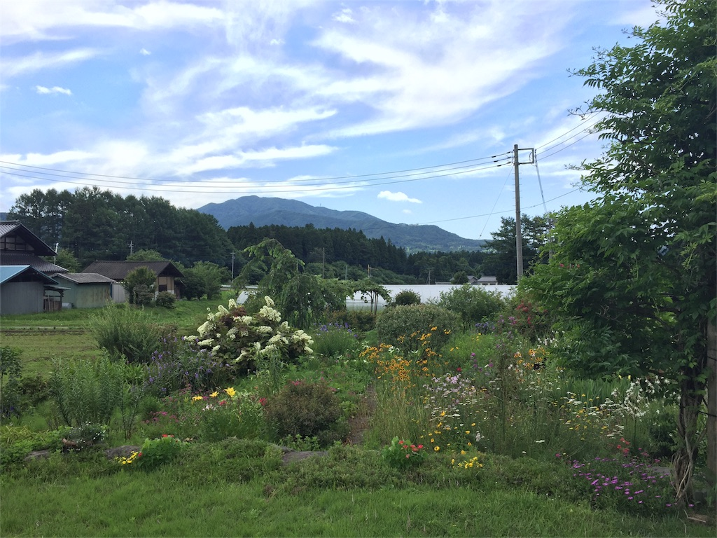f:id:Life_Takayama:20160708114155j:image