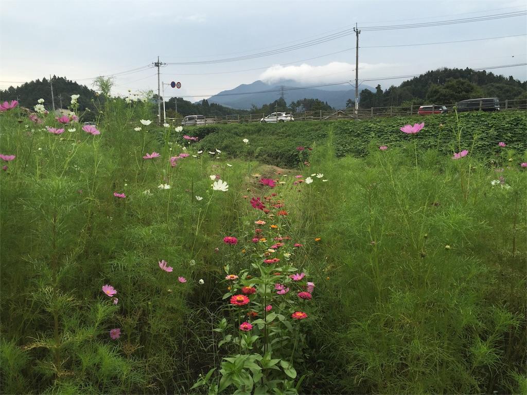 f:id:Life_Takayama:20160908115831j:image