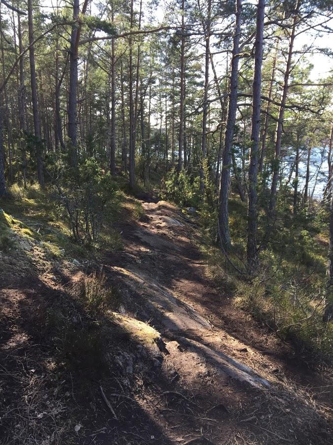f:id:Lifeinsweden:20210407152627p:plain