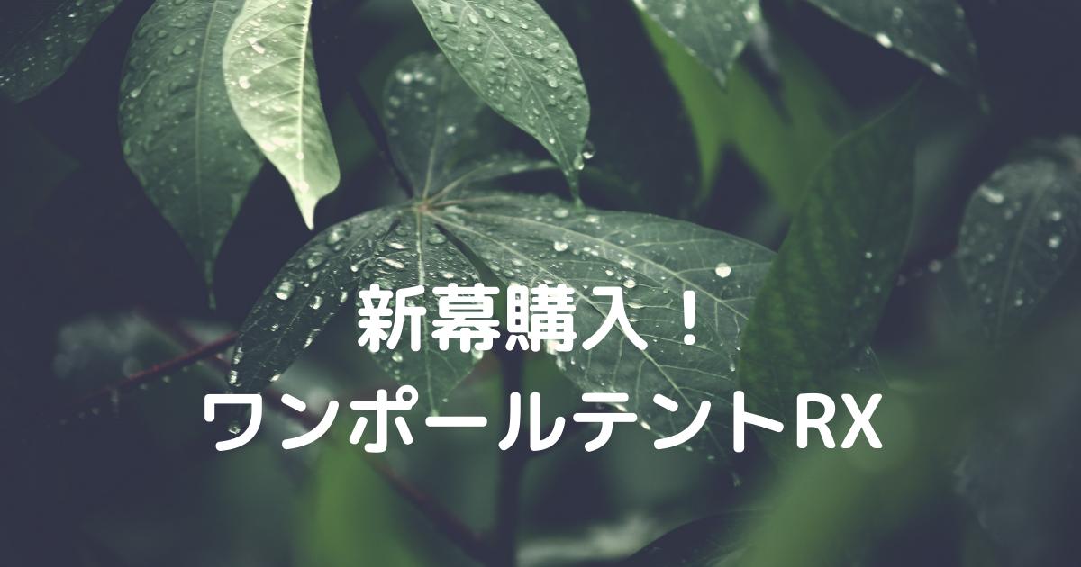 f:id:Lily6_1:20210724161445p:plain