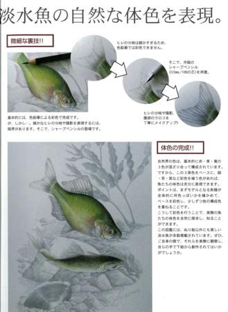 f:id:Limnology:20120111174314j:image
