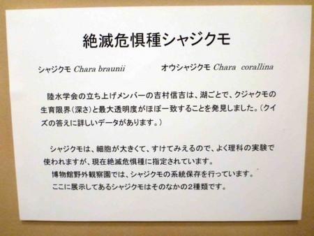 西條八束と日本陸水学の流れ - L...