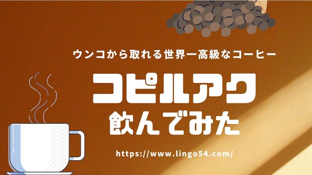 f:id:Lingo54:20200524205353j:image