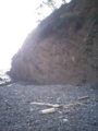 河津浜右岸