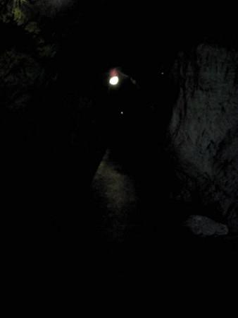 f:id:Llama:20090616235223j:image