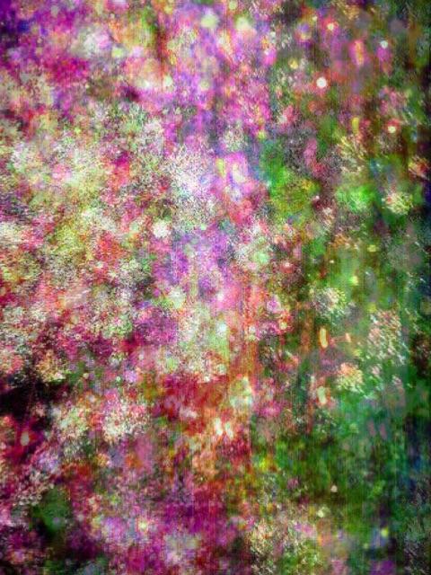 f:id:LobLoy:20150529120040j:image