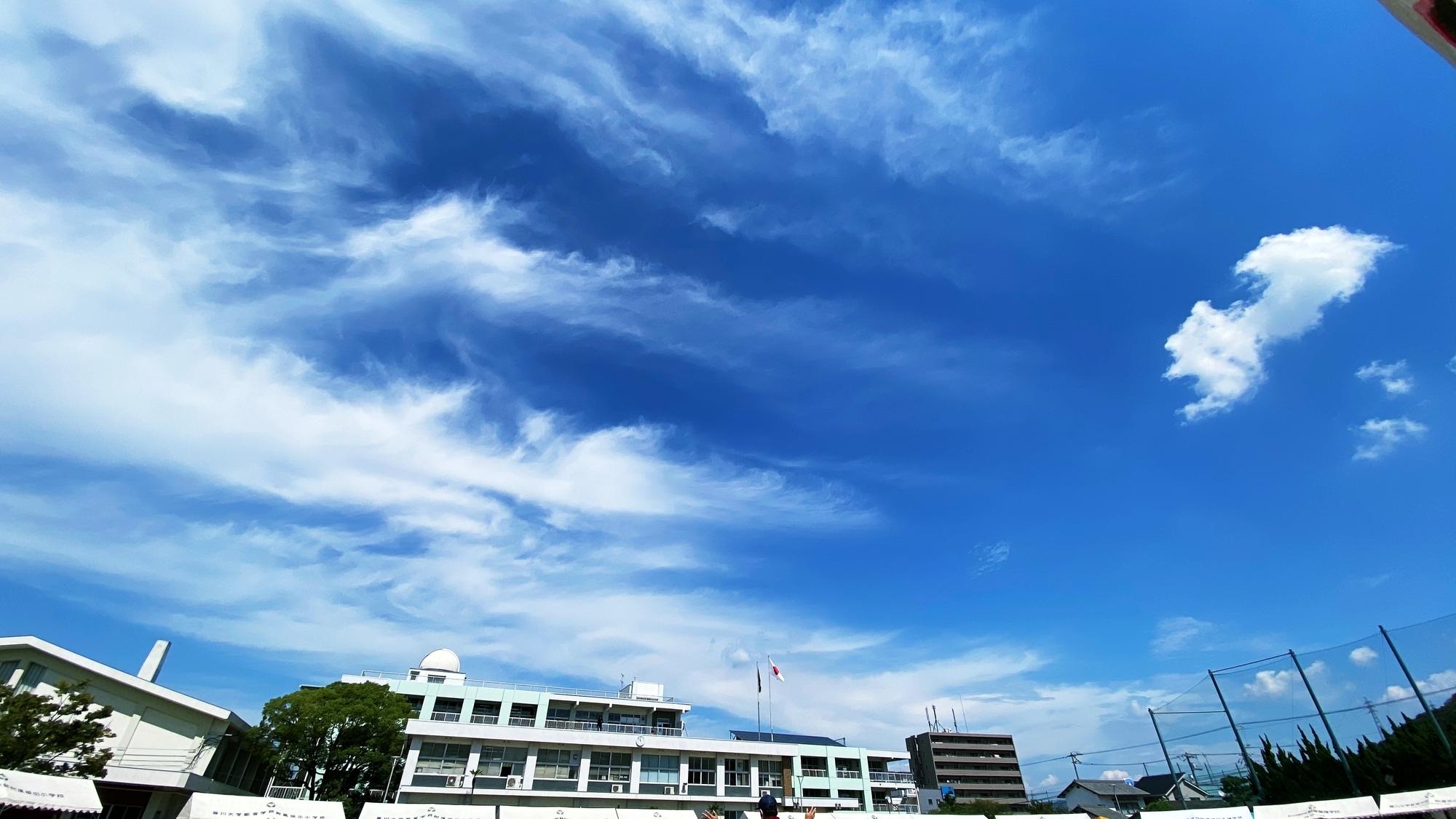 f:id:Logosuke:20200920193047j:plain