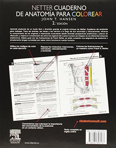 descarga gratuita de Netter. Cuaderno De Anatomía Para Colorear - 2ª ...
