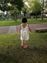 自閉症 育児 苦労 特別支援学校 メリット
